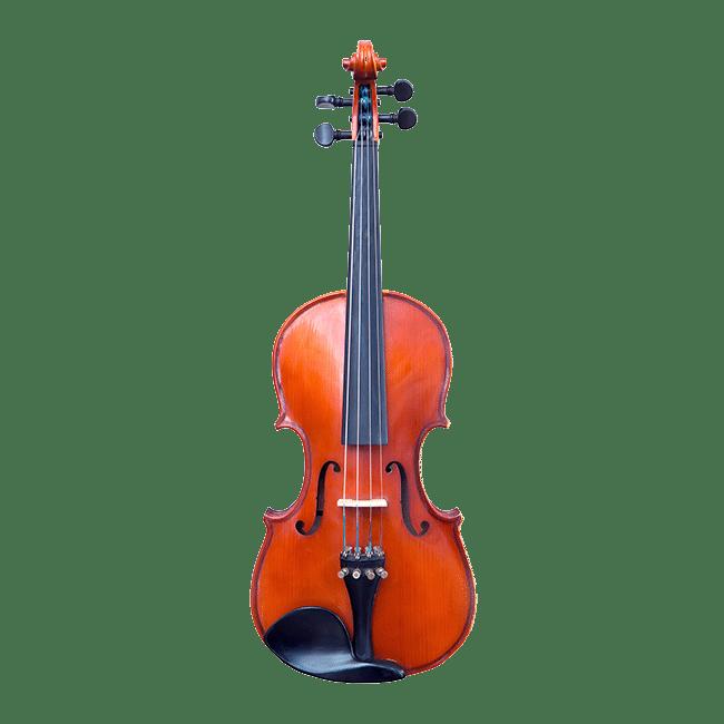 Violon